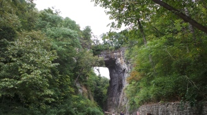 Natural Bridge mit Wald