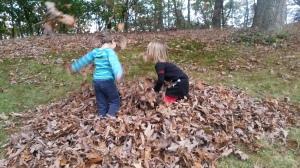 Blätterwerfen, Blog