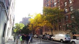 Der Herbst kommt auch nach NY...