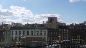Mein Dachgarten mit Blick auf Manhattan...