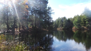 Bigelow Park