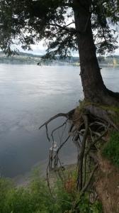 Coolster Baum