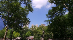 Breakfast in Central Park